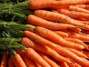 Морковь, любопытное о пользе моркови